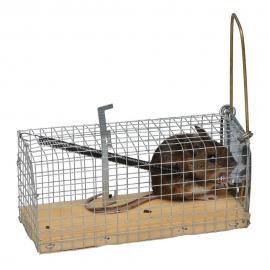Jaula trampa para ratones hecha de malla galvanizada, con una base de madera.