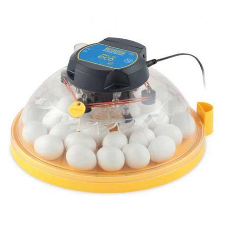 Incubadora Brinsea Maxi II Eco manual con capacidad para hasta 30 huevos de gallina.
