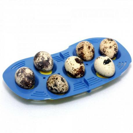 Bandeja para 7 huevos pequeños para Rcom Mini