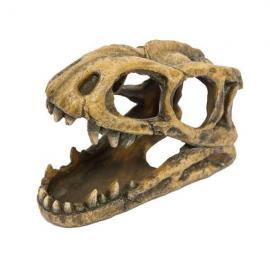 Ornamento con cabeza de tiranosaurio fosilizado (7.5 cm)