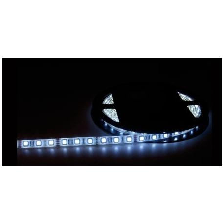 Tira LED de 5 metros 5X5mm Blanco