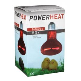 Bombilla infrarroja Powerheat 60 Watt para cría