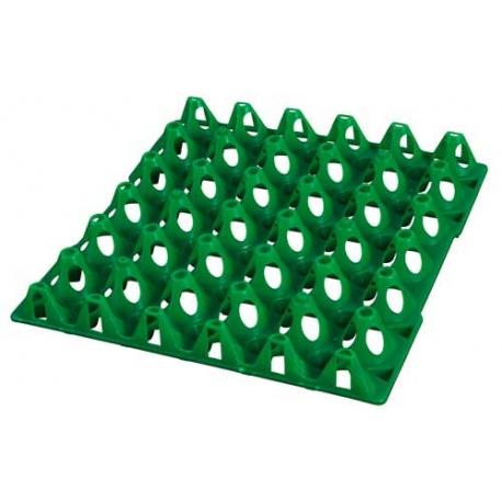Bandeja plástica para 30 huevos de gallina